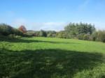 Neuhäusel - Grundstück in sonniger Lage am Ortsrand!